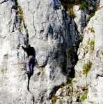 Dolina Bolechowicka - Bolechowice zdjęcia, galeria zdjęć