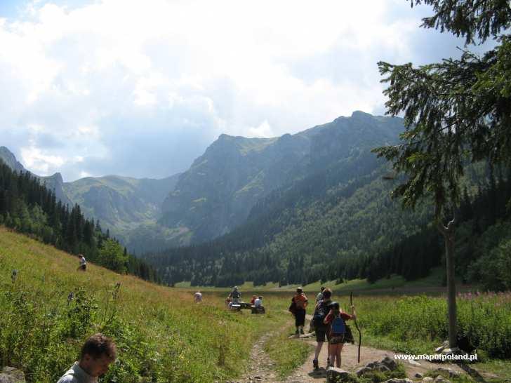 Dolina Małej Łąki - Zakopane