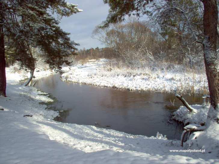 """Rzeka """"Czarna"""" zimą - Sielpia Wielka"""