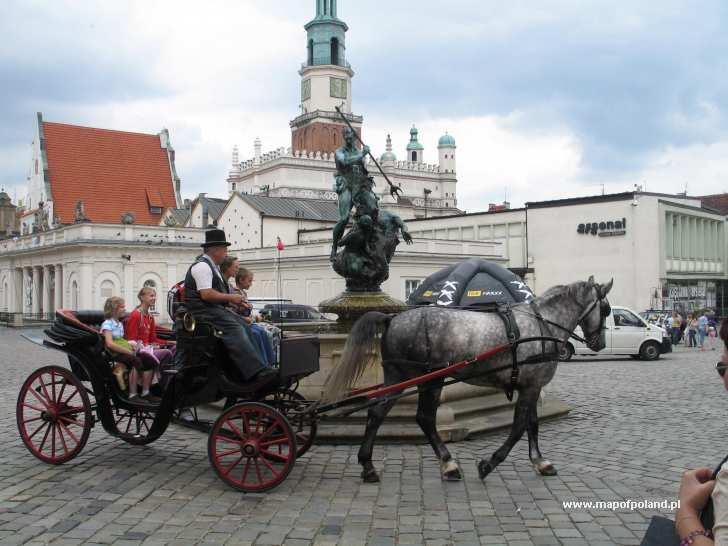 Dorożka - Stary Rynek - Poznań