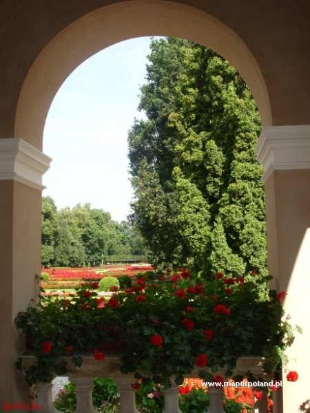 Pałac Zamoyskich - ogród - Kozłówka