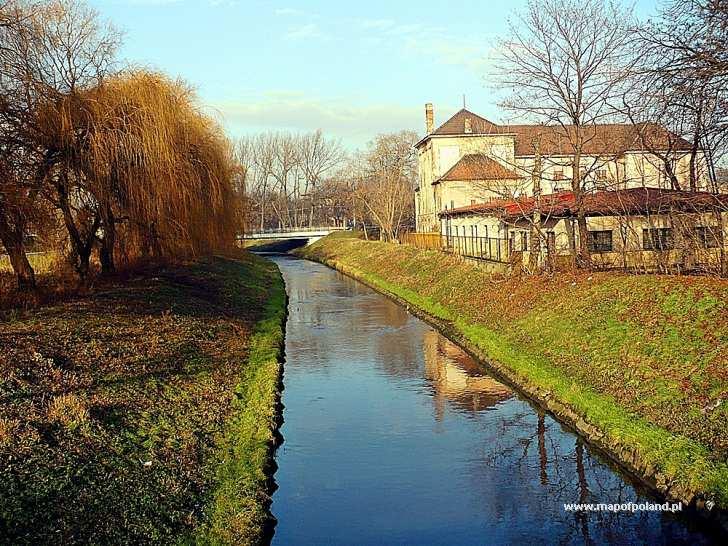 Rzeka Brynica - Czeladź