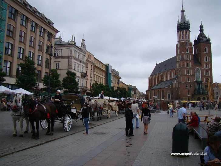 Bryczki na Rynku - Kraków