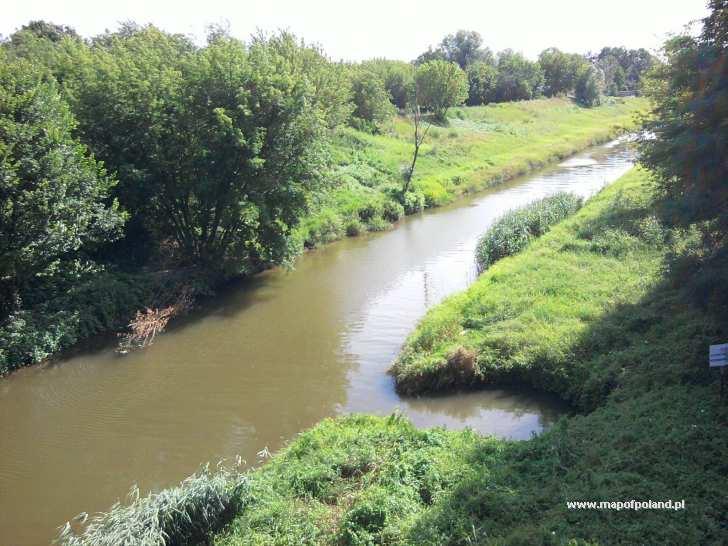 Rzeka Wilga - Kraków