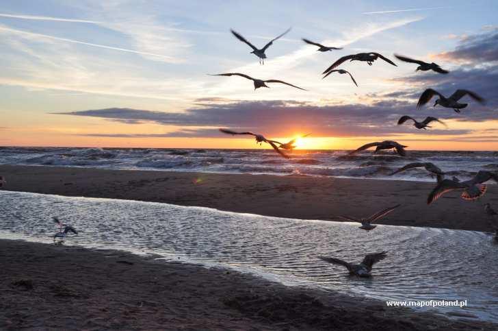 chorwacja noclegi tanie opinie z widokiem na morze online lektor