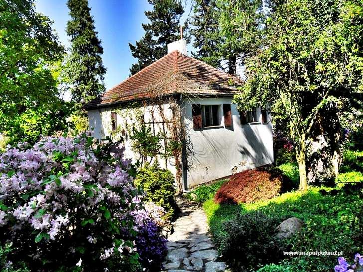 Ogród Botaniczny Arboretum Wojsławice Zdjęcie 137286